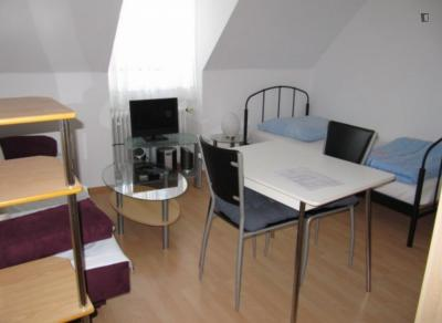 Nice 1-bedroom apartment in Munich right next to Olympiapark