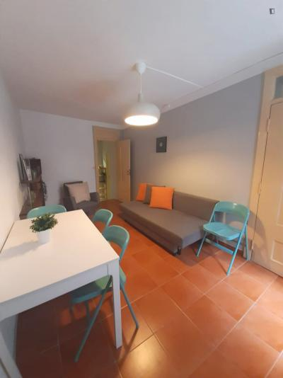 Lovely 2-bedroom apartment