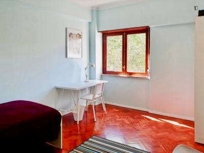 Bright single bedroom in Benfica