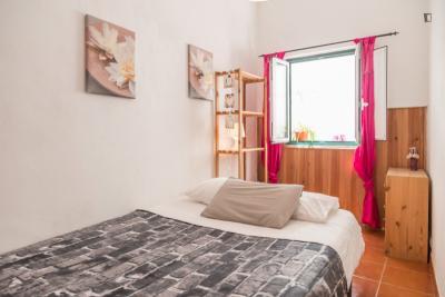 Great looking 1-bedroom apartment in Santa Apolónia