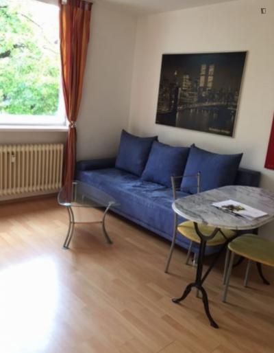 Wonderful 1-bedroom apartment in Munich, near Olympiapark