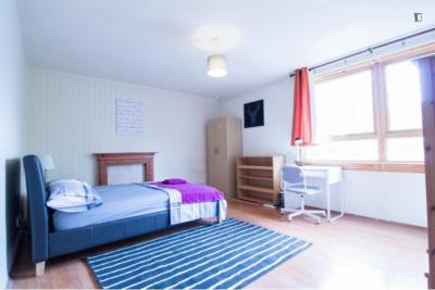 Ample double bedroom near the Mornington Crescent tube