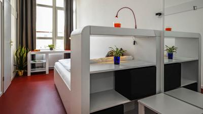 Single bedroom, with private bathroom, in 1-bedroom apartment