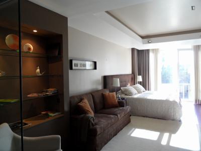 Cozy, and sunny studio Estoril