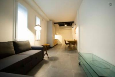 2-bedroom apartment Zamboni