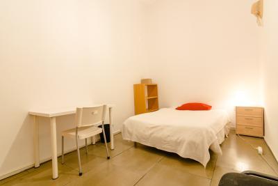 Nice single bedroom in a 10-bedroom flat, near the river