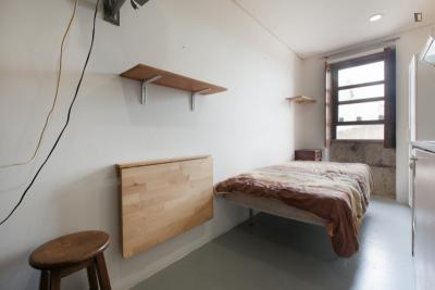 Homely studio in Cedofeita