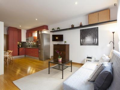 1 bedroom apartment near Poble Sec metro station