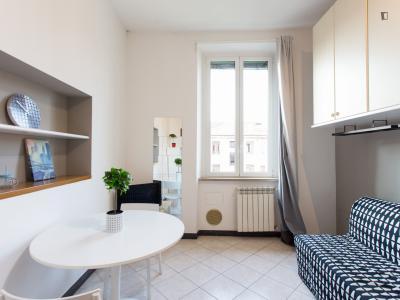 Nice 1-bedroom flat