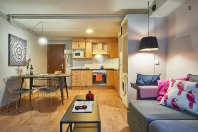 Lovely 1-bedroom apartment in Sant Andreu