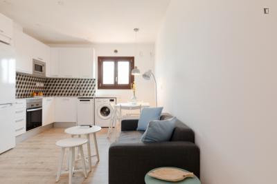 Cool 1-bedroom apartment near Universitat metro station