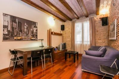 Lovely 1-bedroom apartment in Sant Pere