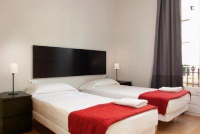 Charming apartment near Universitat de Barcelona