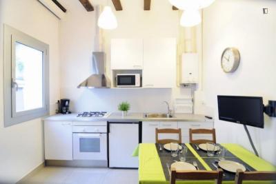 Gorgeous studio apartment in Vila de Gràcia