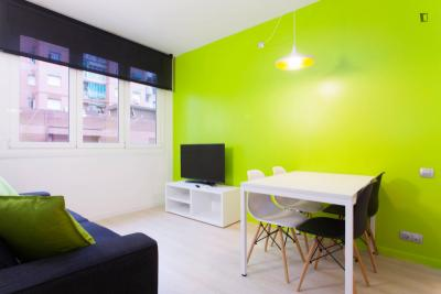 Nice one-bedroom apartment in Eixample