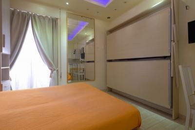 Alluring studio flat near Re Di Roma metro station