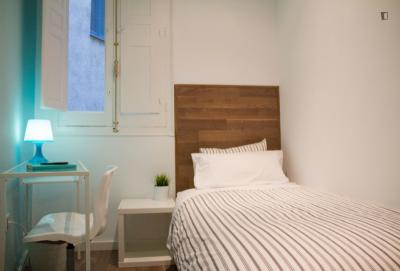 Charismatic single bedroom in a student apartment, in the Lavapiés neighbourhood