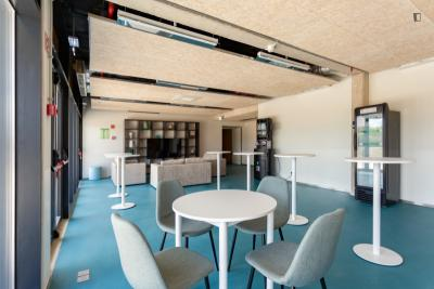 Studio in Student Residence near Nova School of Business and Economics in Carcavelos