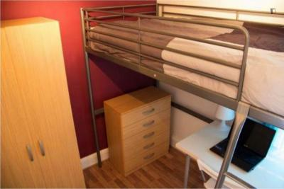 Homely single room in Shoreditch