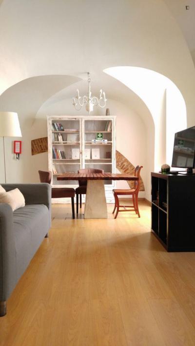 Marvellous 2-bedroom apartment in São Bento