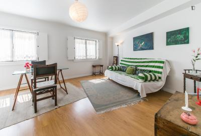 Awesome 1-bedroom apartment in Graça