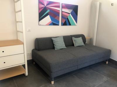 Spacious studio in Torrelodones