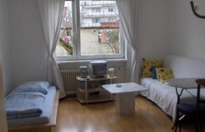 Amazing 1-bedroom apartment in Munich, near Olympiapark