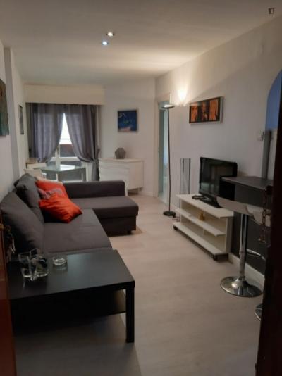 Charming 48m2 apartment , in classic El Viso