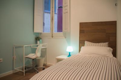 Welcoming single bedroom in the Lavapiés neighbourhood