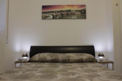 Roomy apartment in Municipio Roma XII