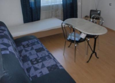Nice and comfortable 1-bedroom apartment in Munich near Olympiapark