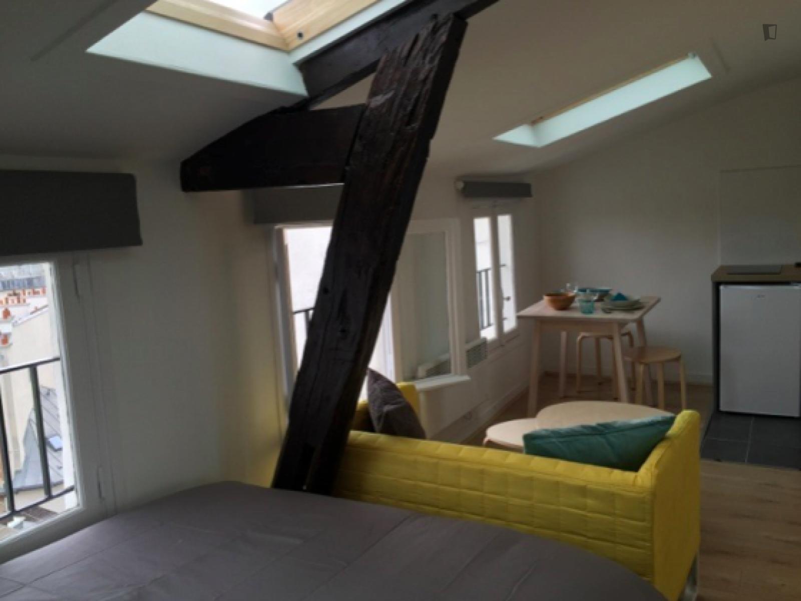 Rue Dauphine, 6th arrondissement of Paris, FR-75 - 1,050 EUR/ month