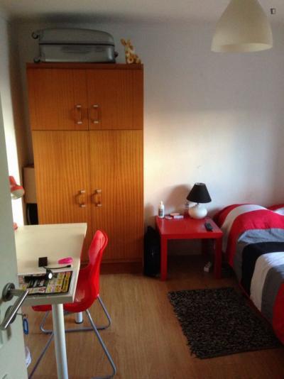 Homely single room in Penedo da Saudade
